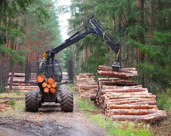 forestry_lumber application